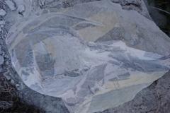 Artako1-marbre