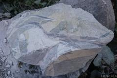Artako4-marbre